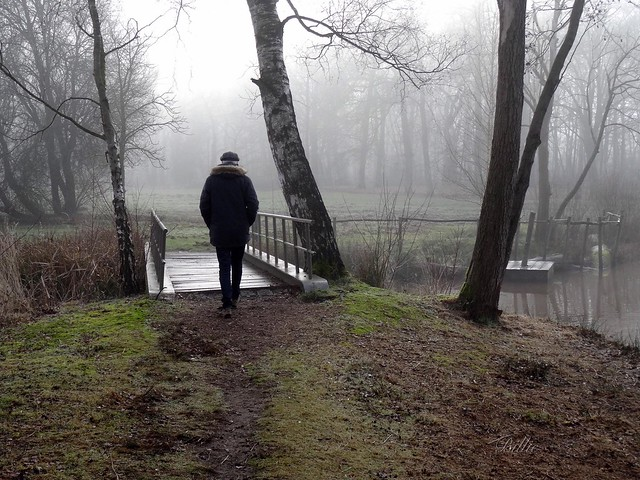 Walking...... The most ancient exercise and still the best modern execise (Carrie Latet) !