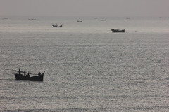 Group of Small Boats