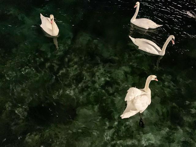 jezero Ženeva