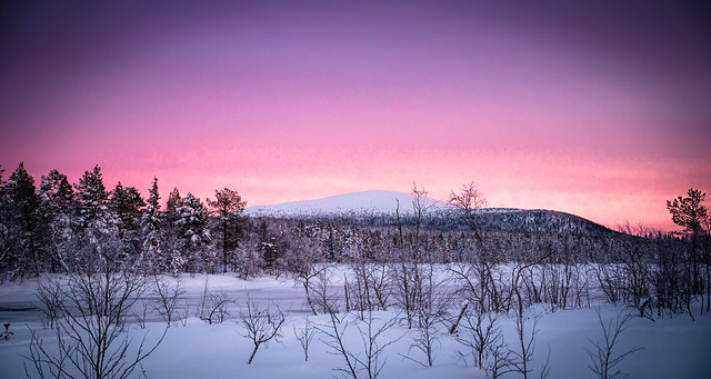 Evening at Jerisjärvi