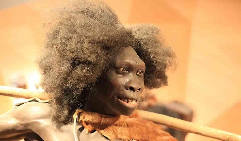 des-fossiles-vieux-de-50000-ans-suggèrent-que-les-Néandertaliens-ont-enterré-leurs-morts