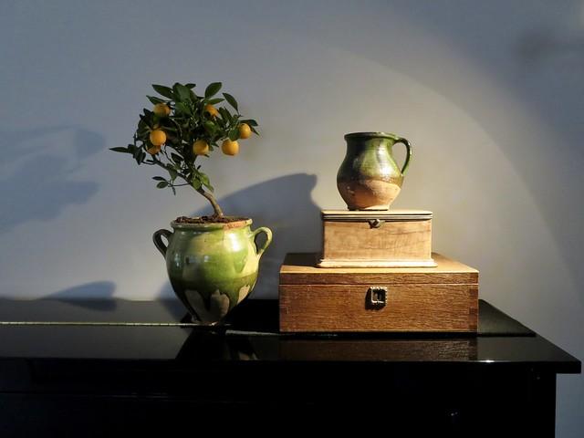Piano oude kistjes groen kruikje plant in pot
