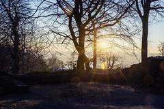 Winter sunrise at castle ruin Neue Isenburg