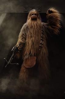 Chewbacca - Andrea
