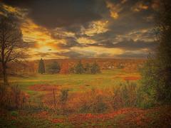 """Landscape taken with a cheap lens"""