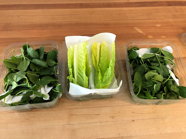 containers of fresh lettuce and salad greens