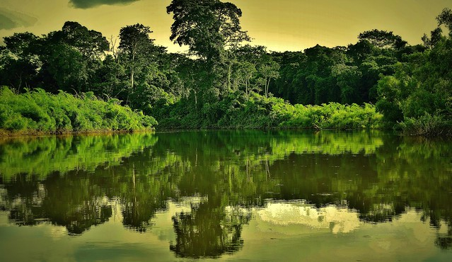 MEXICO, Las Guacamayas, direkt am Rio Lacantún, mitten im Dschungel, herrliche Natur,  19540/12393
