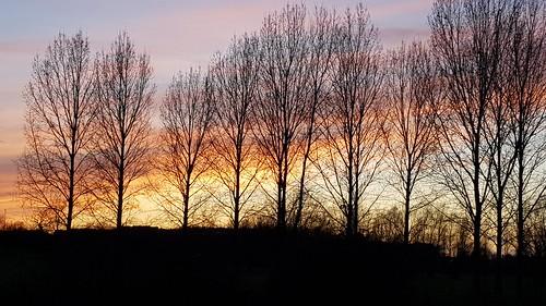 haverhill haverhilluk sunset trees water westtownpark