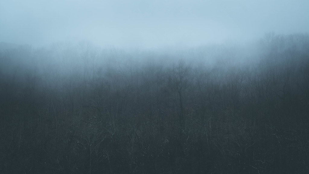 Daybreak Fog. Two Rivers Park. 2020.