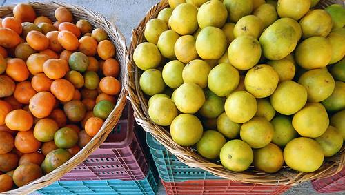 Citrus fruit in the mercadito in Marquelia, Mexico