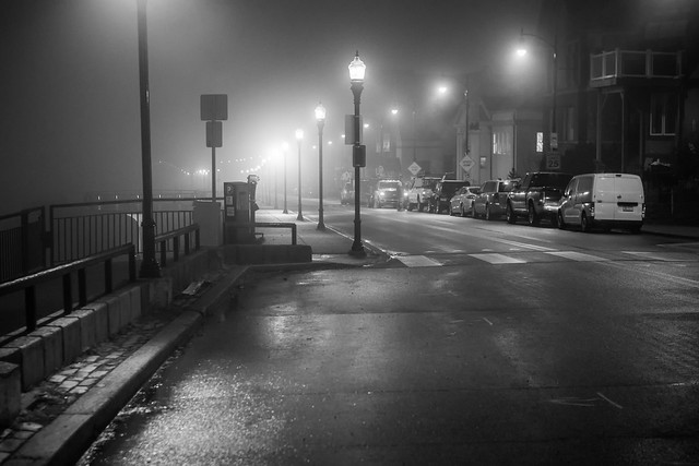 Foggy & Damp
