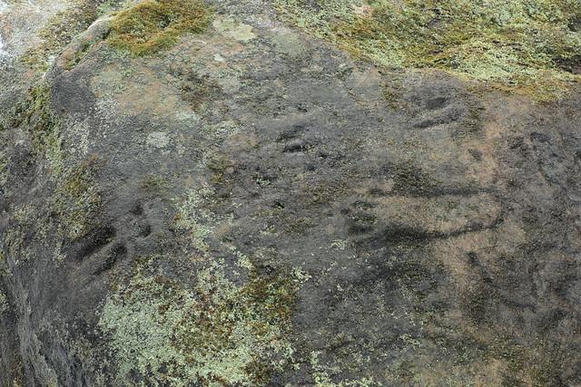 Prehistoric Petroglyphs, Parva Petroglyph Rock, Fayette County, Pennsylvania 2