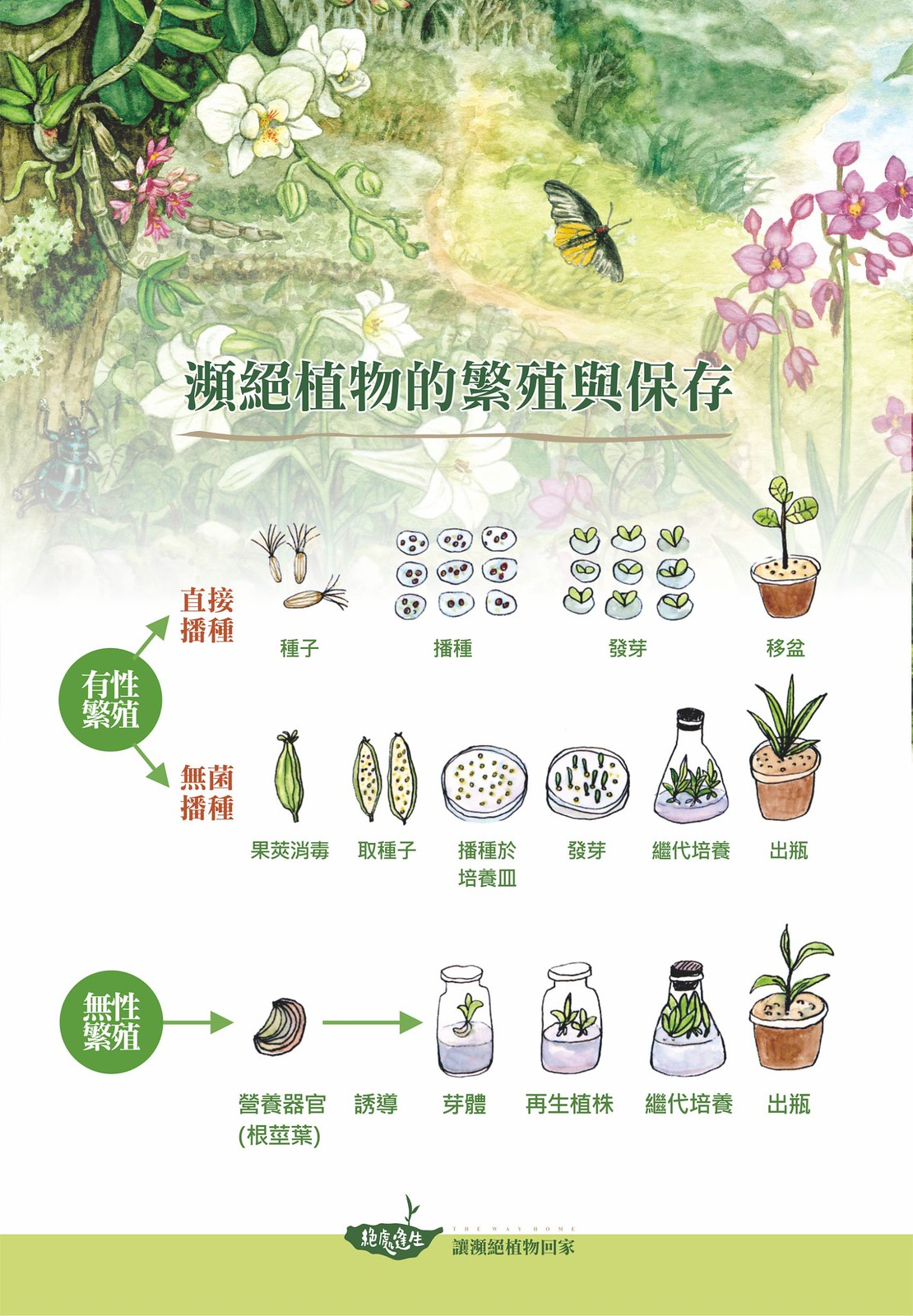 好不容易取得瀕絕植物種苗枝條,該怎麼繁殖保存需先進行評估。圖片來源:特生中心