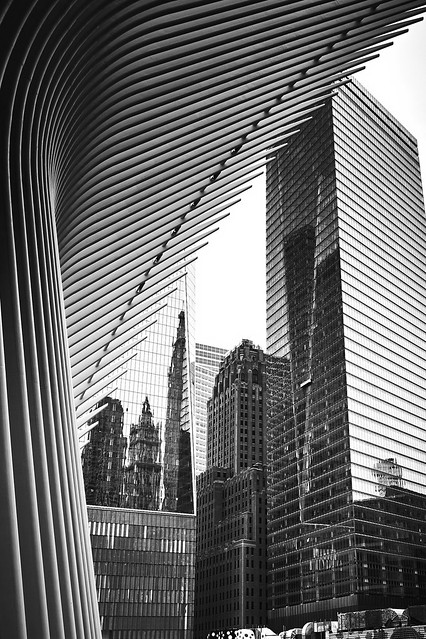Lines of NYC
