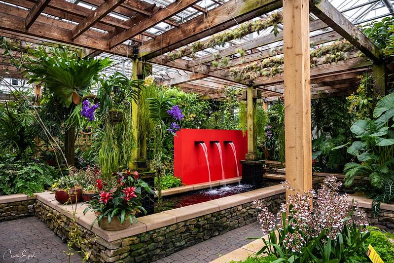 Atlanta Botanical Garden Feb 2020