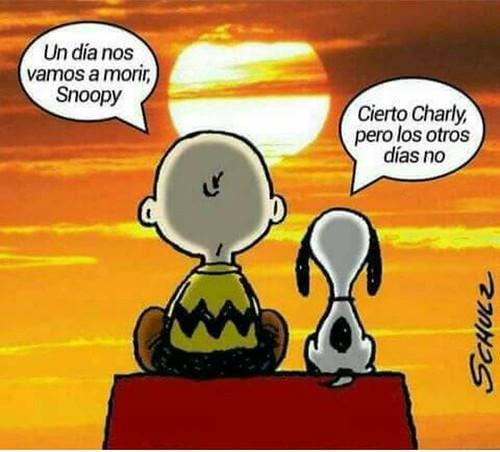 Snoopy sobre Death Cafe, para conversar sobre la muerte sin tabúes y aprender a vivir