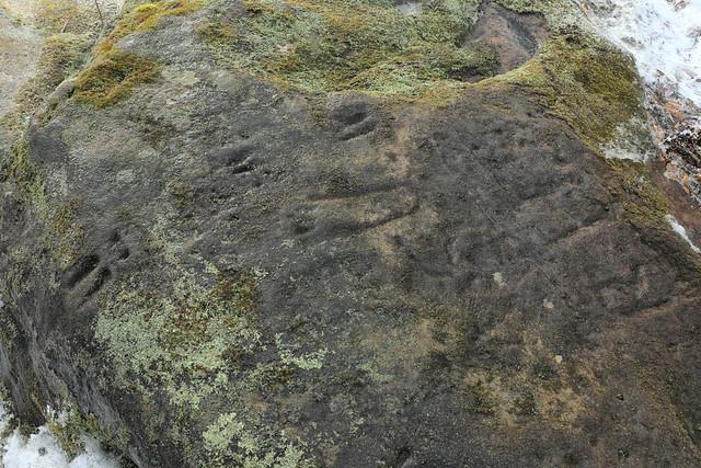 Prehistoric Petroglyphs, Parva Petroglyph Rock, Fayette County, Pennsylvania 1