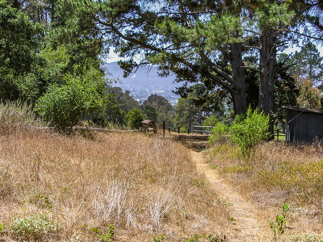 Trail To Black Hill 06