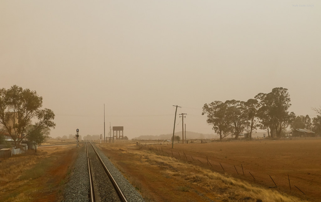 Dusty Wirrinya by Robert Cook