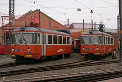 2010-01-20, BDWM, Bremgarten