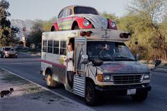 Bugus in Tucson.