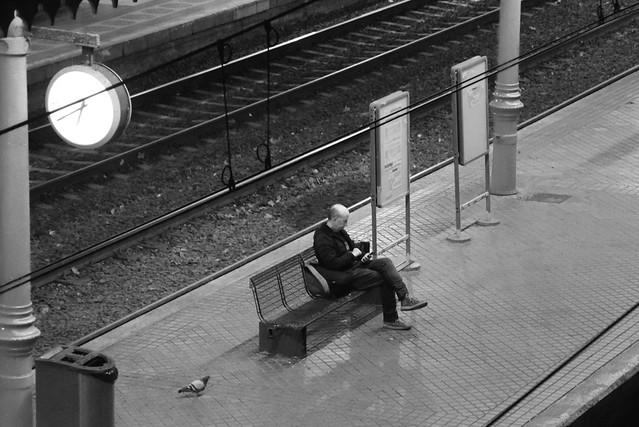 solitaria espera
