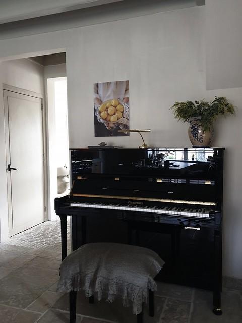 Piano poster citroenen Keulse pot met Mimosa