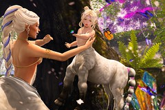 ~Baby Centaur Princess~