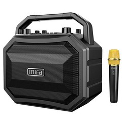 TWS Bluetooth Stereo Speaker. Wireless Mic. For Singers, outdoors and more