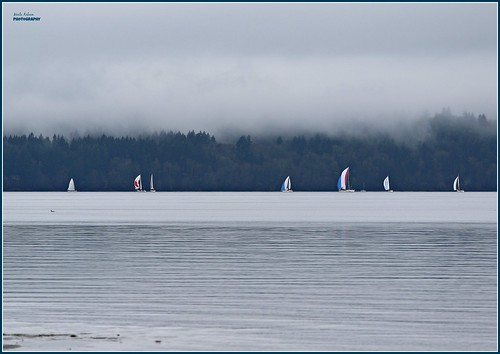sailing sailboats pugetsound dashpoint dashpointstatepark washington nature water waterscape landscape waterscene canon trees clouds cloudcover fog picmonkey overcast cloudy boats boating washingtonstate