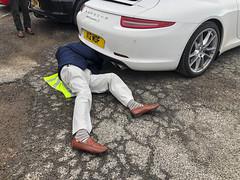 Vet Trying Birth A Pregnant Porsche?