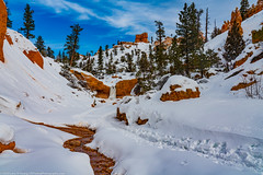 Water Canyon Deep in Snow