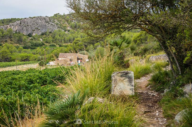 Pica de piedra en el Camí Blanc cerca de Cal Muntaner