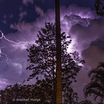 19. Veebruar 2020 - 21:18 - There were some small, fast-moving and very active thunderstorms that moved through Brisbane last night. I set up the camera on my back deck and was able to capture a few clear air strikes from one of the storms. Here are the best of them.