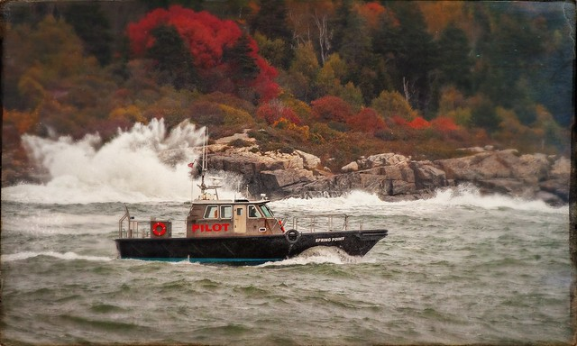 Pilot Boat Headed Out Of Portland Harbor
