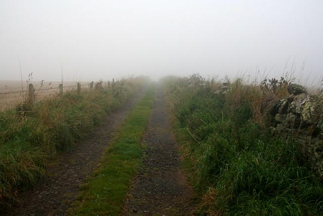 The Angus Coast path near Ethie
