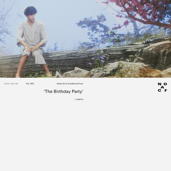 The 1975 - The Birthday Party