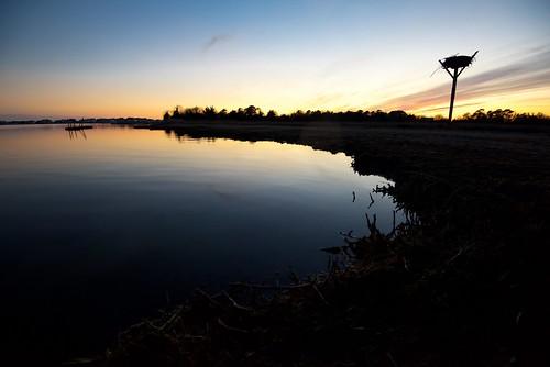 barnegatbay ospreynest silhouette sunset dusk reflection bay waretown nj newjersey beach bayside odc aplaceiliketovisit