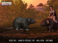 HILTED - Rider Rat Ad