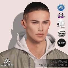 ALANTORI | Chase Hairbase