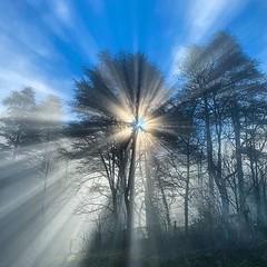 Buenos días desde Roquefort :heart_eyes: Foto con denominación de origen :joy: #france #roquefortsursoulzon foto de #iphone11pro