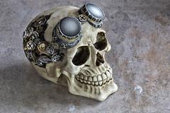 Steampunk Skull...