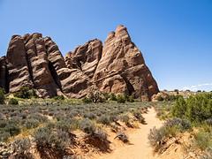 IMGPL03750_Fk - Arches National Park - Moab UT
