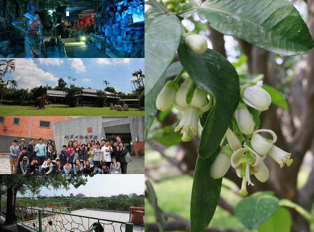 春遊台南 (5)