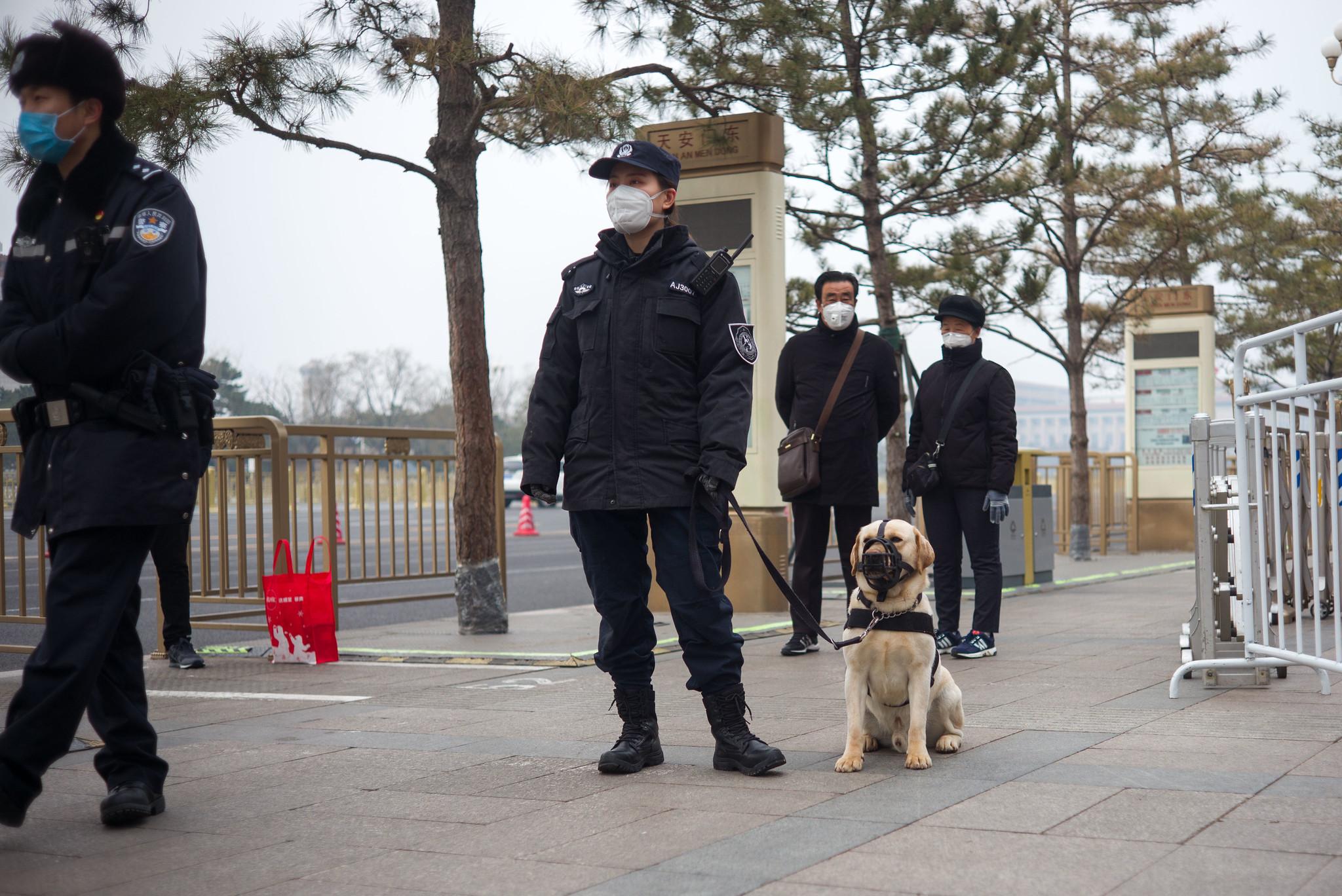 hund-maske