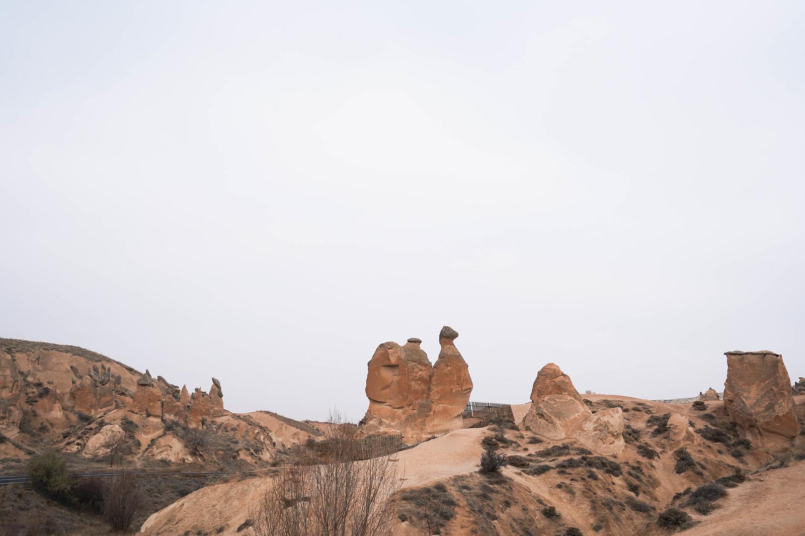 土耳其旅遊 駱駝岩
