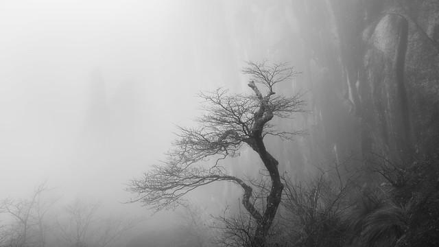 The Watchman - Mt. Huangshan - China