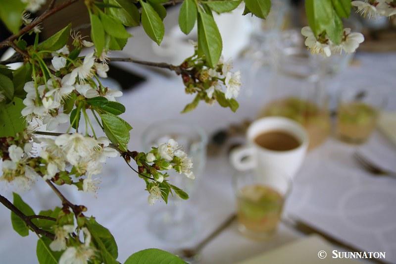 Artalli, omenapuu, aamukahvi, bloggaajan ensimmäinen vuosi