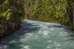 Robson River in Mount Robson Provincial Park