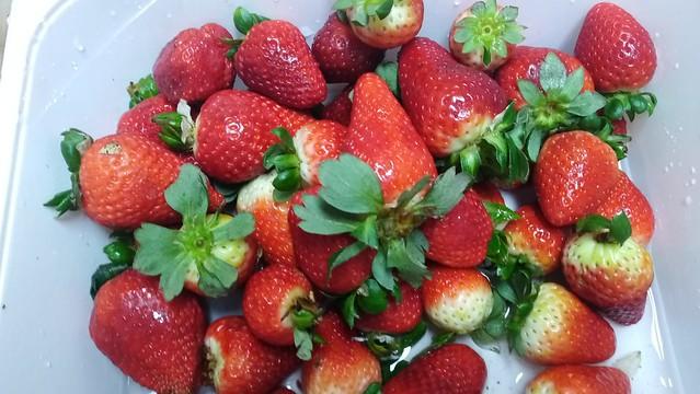Creciendo en salud- fresas
